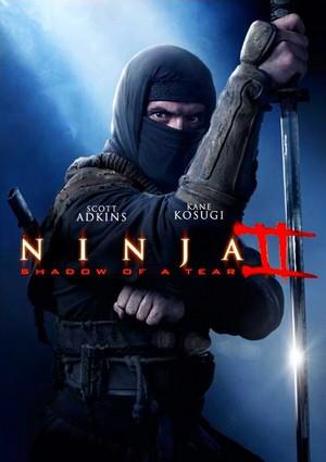 Ниндзя 2 смотреть онлайн бесплатно в хорошем качестве HD 720